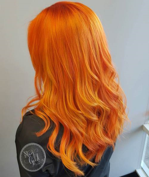 Carrot Gold
